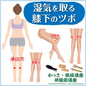 湿気を取る膝下のツボ